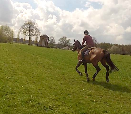 Gallop to The Temple at Escrick Park