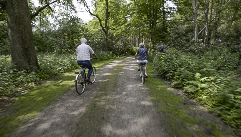 Cycling Trails at Hollicarrs