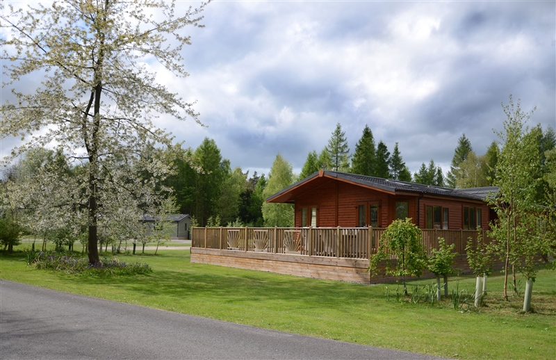 Lodges in spacious surroundings