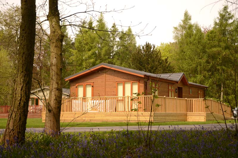 Lodges set in spacious plots