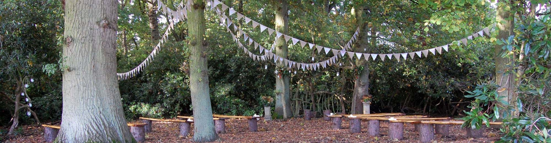 outdoor woodland open air ceremony hand tie humanist yorkshire