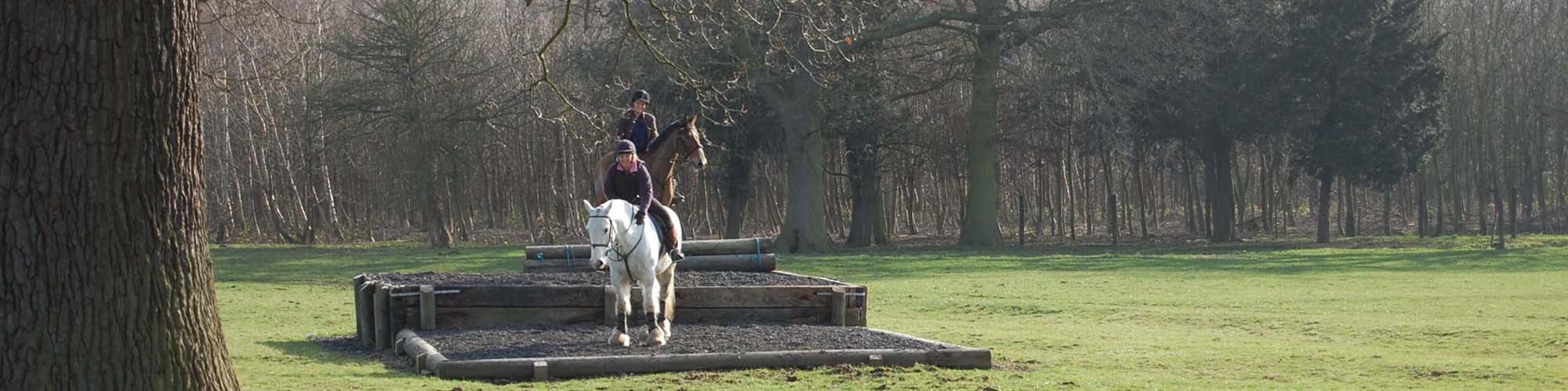 Horse Trekking, Horse Hacking & Horse Obstacle Course:: Escrick